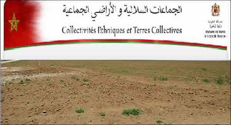 أصحاب الأراضي السلالية باقليم سيدي سليمان تطالب باستفسار حول مصير اللوائح المسجلة لسلالية أولاد احميد