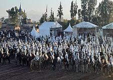 انطلاق فعاليات الدورة الثامنة لمهرجان ربيع تاملالت بإقليم قلعة السراغنة : فروسية وندوات ومسابقات رياضية ومعارض فنية  وصناعية وفلاحية