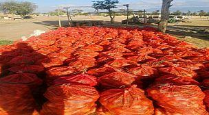 قصبة تادلة: جمعية التضامن للخضر والفواكه توزع مساعدات غذائية على الأسر المتضررة من جائحة كورونا
