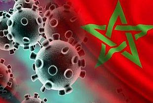 246 حالة إصابة مؤكدة جديدة بفيروس كورونا يرفع الحصيلة 13215 حالة.
