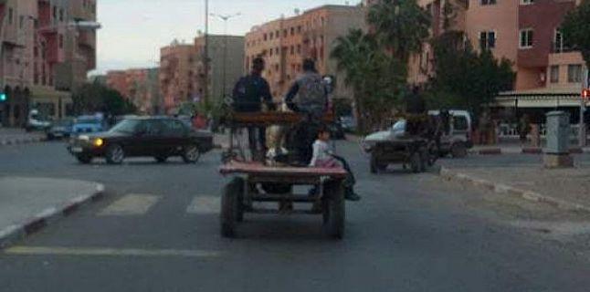 الكاروات آفة حركة المرور بمدينة قلعة السراغنة