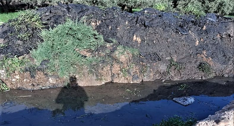 خطير.. استعمال المياه العادمة لسقي أراض فلاحية بدوار فيلالة نواحي مراكش