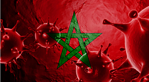 الحالة الوبائية بالمغرب وتوزيعها الجغرافي