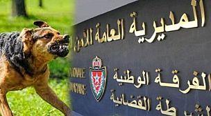 الادارة العامة للامن الوطني تصدر تعليمات صارمة بحيازة او مرافقة او ترويض الكلاب الشرسة طبقا للقانون56.12