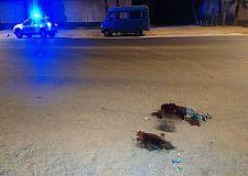 مراكش  : حادثة سير بين دراجتين تسقط قتيلا وجرح اخر