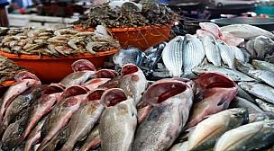 ارتفاع أسعار الأسماك واللحوم بعدد من المدن المغربية