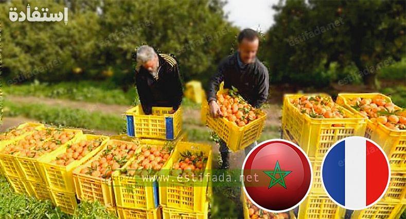 إعلان فرنسا عن فتح أبوابها للعمال الموسميين المغاربة يخلق ضجة كبيرة بالجهة الشرقية.