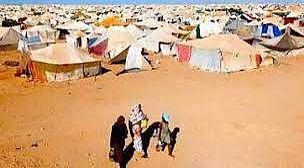 نائب إيطالي يعيد ملف اختلاس المساعدات الإنسانية في مخيمات تندوف الى الواجهة