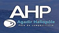 إطلاق طلب إبداء اهتمام لمواكبة مشاريع مبتكرة في قطاع تربية الأحياء البحرية بجهة سوس ماسة